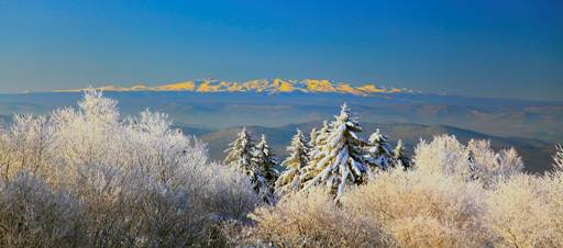 采撷吉林省最美的风景送到新疆